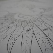 Детаљи крила
